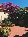 Patio mit Blumen Lizenzfreies Stockbild