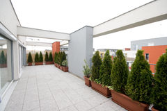 Patio. Modern patio with green plants Stock Images