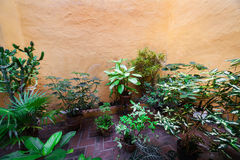 Patio in a old house Stock Photography