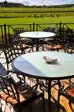 Patio overlooking vineyard Royalty Free Stock Images