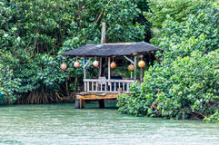 Patio on the River. Old wooden patio in a tropical scene Royalty Free Stock Photography
