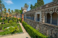 Gardens Royal Alcazar of Sevilla. Andalusia, Spain stock images
