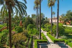 Gardens Royal Alcazar of Sevilla. Andalusia, Spain stock photography