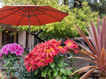 Patio seating in the Sonoma Valley. Winery patio invites you to sit and relax Royalty Free Stock Image