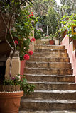 Patio steps in Mediterranean style. Sunny patio steps in Mediterranean style surrounded by trees and plants Stock Photos