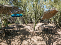 Patio tables and chairs under shad umbrellas at Tohono Chul Park. Tucson, AZ, March 24, 2016:  Patio tables and chairs under shade umbrellas arranged in a Stock Photo