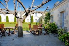 Patio trasero con la terraza agradable y hortensias florecientes Imagen de archivo