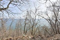 Patio trasero de la opinión del lago foto de archivo