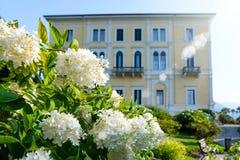 Patio trasero del chalet con las flores y el jardín fotos de archivo libres de regalías