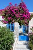 Patio trasero reservado colorido con las flores hermosas y la arquitectura tradicional clásica de la isla de Santorini Fotos de archivo libres de regalías