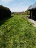 Patio trasero verde en Francia Foto de archivo libre de regalías