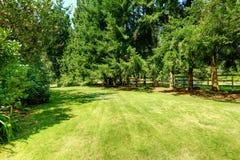 Patio trasero verde Paisaje del campo Fotografía de archivo
