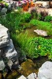 Patio- und Teichlandschaftsgestaltung lizenzfreie stockfotos