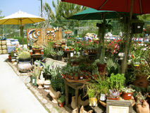 Patio Vases and Ornaments, Botanical Garden Centers, Claremont, California, USA Stock Photo