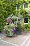 Patio verde con il vaso ed i fiori Fotografia Stock