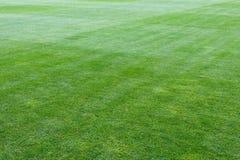 Patio verde del estadio de fútbol imagen de archivo
