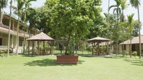 Patio verde del hotel en Asia Pueblo en el parque nacional de Chitwan, Nepal almacen de video