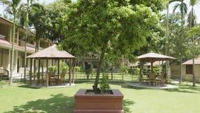 Patio verde del hotel en Asia Pueblo en el parque nacional de Chitwan, Nepal almacen de metraje de vídeo