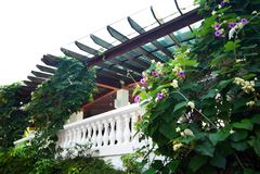 Patio z naturalnym stylem kształtuje teren rośliny Obraz Royalty Free