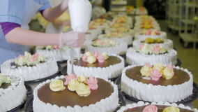 Patissier Decorate Cakes mit Schokolade, Creme und Zucker auf einer Kuchenproduktionsfabrik stock video