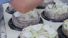 Patissier Decorate Cakes mit Schokolade, Creme und Zucker auf einer Kuchenproduktionsfabrik stock video footage