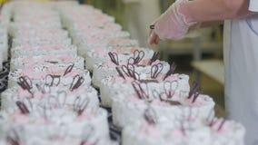Patissier Decorate Cakes mit Schokolade, Creme und Zucker auf einer Kuchenproduktionsfabrik stock footage