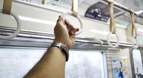 patka w pociągu obrazy royalty free