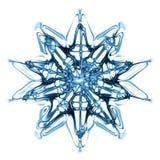 płatkiem śniegu Obrazy Stock