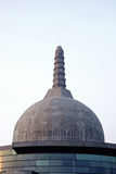 Patliputra Karuna Stupa 3 Royalty Free Stock Images
