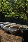 Patna la India imagen de archivo libre de regalías