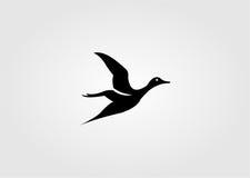 Pato ilustração stock