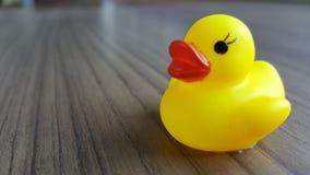 Pato amarelo Foto de Stock