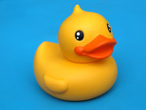 Pato amarelo Imagens de Stock