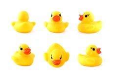 Pato amarelo de borracha Fotografia de Stock