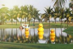 Pato amarillo en la piscina Fotos de archivo