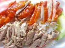 Pato asado con arroz Imágenes de archivo libres de regalías