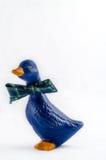 Pato azul Fotografia de Stock Royalty Free