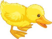 Pato bonito dos desenhos animados Fotografia de Stock Royalty Free