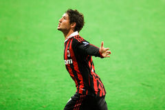 Pato Celebration Royalty Free Stock Image