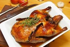 Pato cocido al horno Imagen de archivo