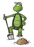 Pato-colhereiro da tartaruga Imagens de Stock