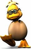 Pato com ovo Imagem de Stock