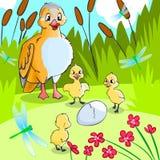 Pato com patinhos. ilustração do vetor