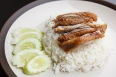 Pato de assado sobre o arroz com pepino Fotos de Stock