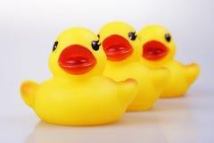 Pato de borracha Fotografia de Stock