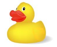 Pato de borracha Imagem de Stock Royalty Free