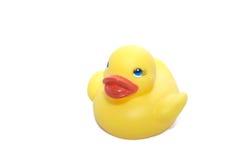 Pato de borracha. Foto de Stock Royalty Free