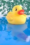 Pato de borracha amarelo fotografia de stock royalty free