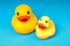 Pato de borracha amarelo na água azul do fundo Foto de Stock