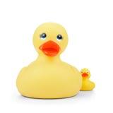 Pato de borracha com patinho Foto de Stock